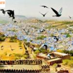 Best Time to Visit Rajasthan – Royal Adventure Tour