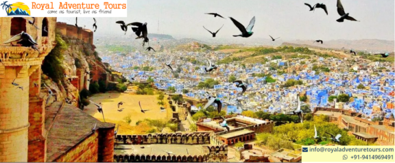 Best Time to Visit Rajasthan – Royal Adventure Tour