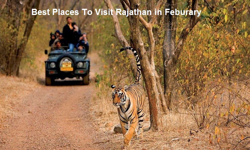 5 Best Places to Visit in Rajasthan in February