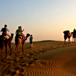 How to Obtain Reduced Cost Jaisalmer Desert Safari!