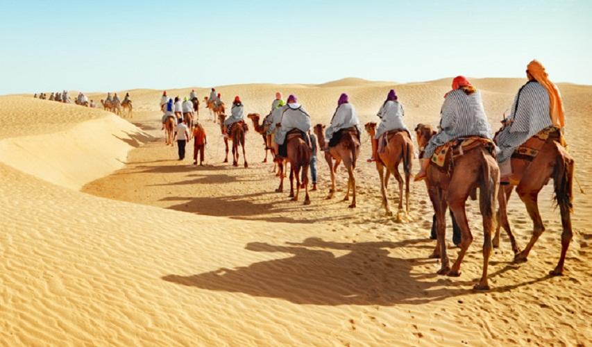 Rajasthan Camel safari Tours